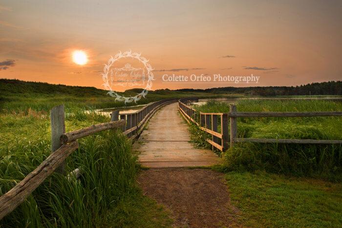 Bridge at Duneland Photography Backdrop