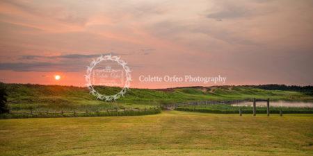 Duneland Trail Photography Backdrop