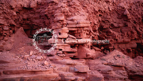 Red Rock Photography Backdrop