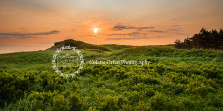 Sand Dunes Photography Backdrop