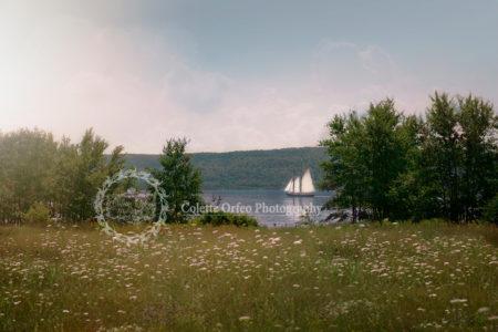 Tall Ship Photography Backdrop