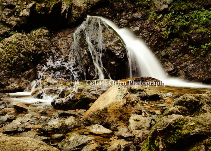Waterfall Photography Backdrop