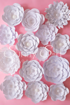 Paper Flowers White on Pink