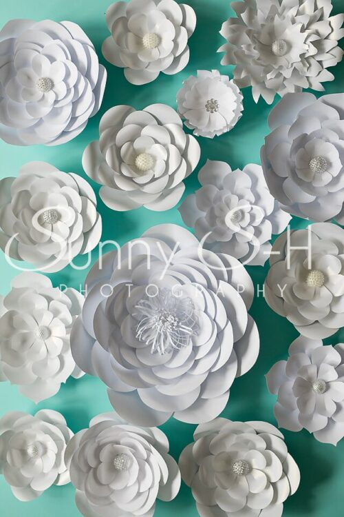 White Paper Flowers Teal Photography Backdrop