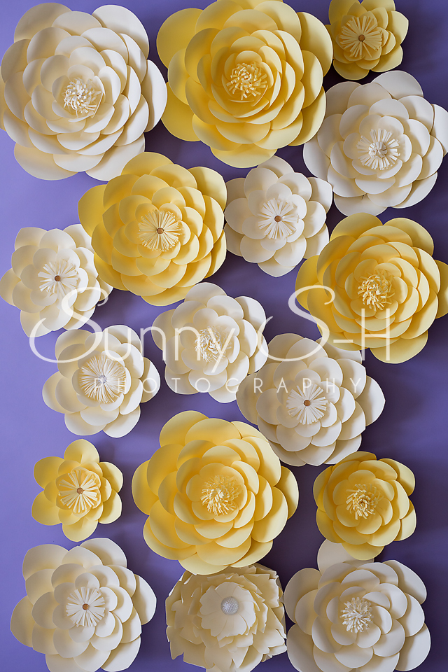 Yellow Paper Flowers Photography Backdrop