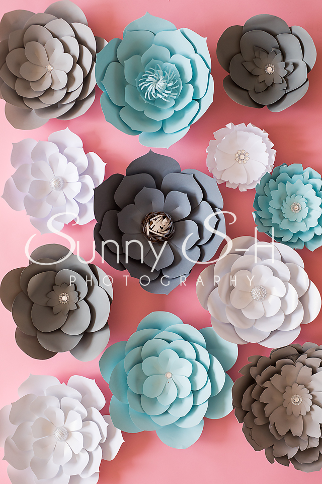 Paper Flowers Photography Backdrop