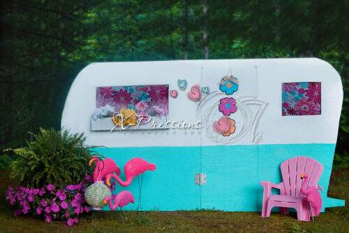 Flamingos at the Trailer Backdrop