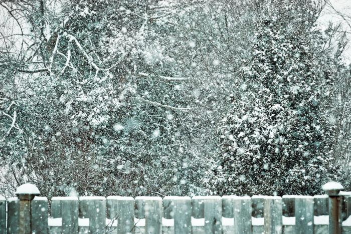Winter Flurries Snowfall Backdrop