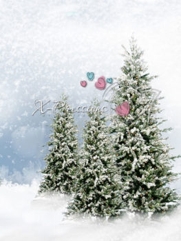 Evergreen Tree Winter Snow Backdrop