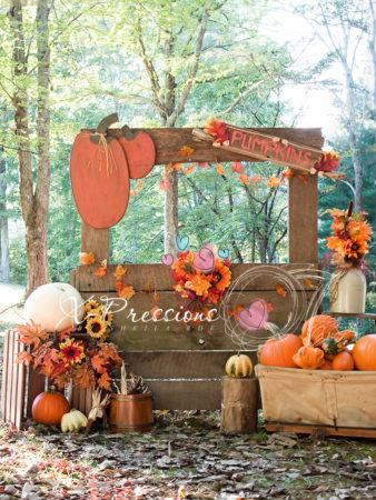 Pumpkin Stand Fall Backdrop
