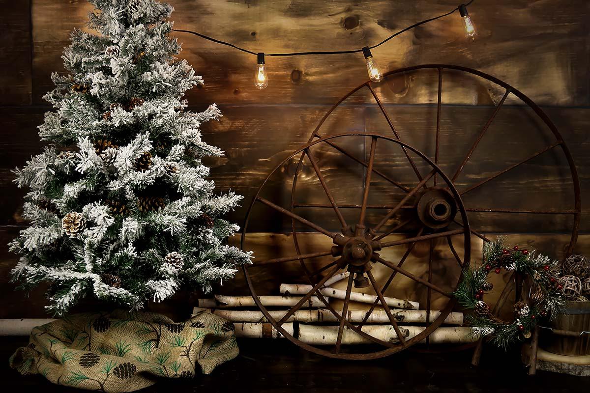 Rustic Christmas Cabin Backdrops Canada