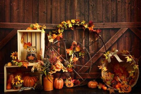 Harvest Wheel Fall Autumn Backdrop