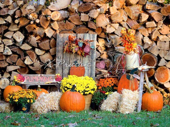 Rustic Fall Backdrop