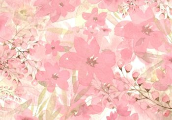 Avery Pink Floral Backdrop