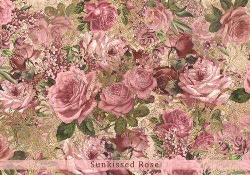 Sunkissed Vintage Rose Backdrop