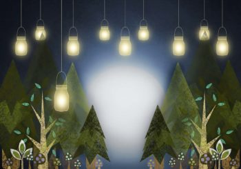 Woodland Lights Backdrop