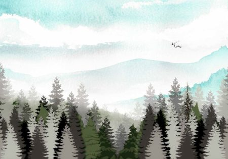 Misty Mountain Forest Nature Backdrop