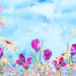 Blue Sky Spring Tulip Backdrop