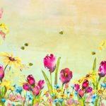 Bee Spring Tulip Backdrop