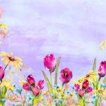 Purple Spring Tulip Backdrop