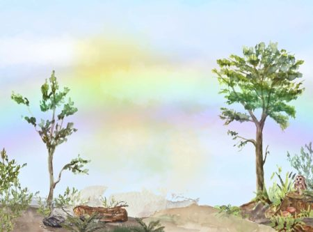 Hundred Acre Wood themed Backdrop