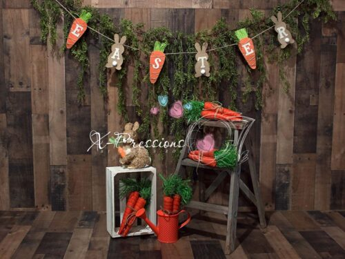 Easter Backdrop featuring carrots