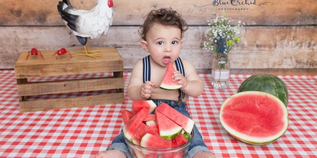 Watermelon themed photoshoot using Old Barn Woods backdrop