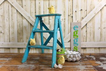 Chicks and Eggs Easter Backdrop