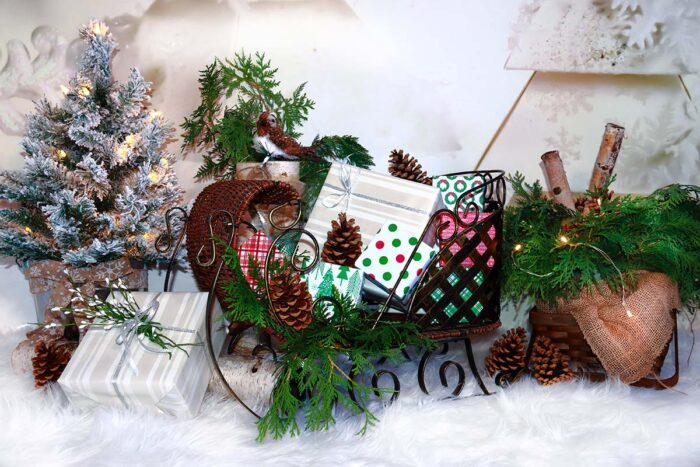 Christmas Sleigh Photography Backdrop