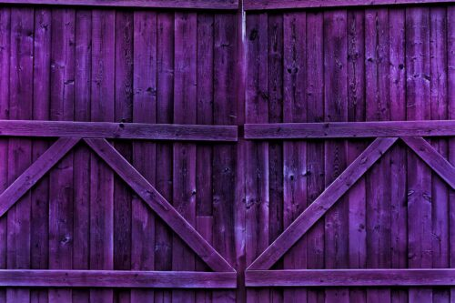 Double Gate Concord Grape Photography Backdrop