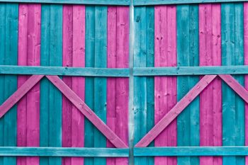 Double Gate Cotton Candy Photography Backdrop