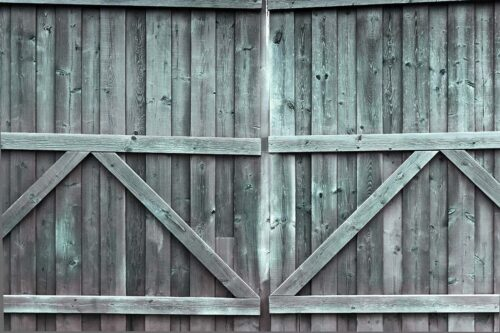 Double Gate Green Tint Photography Backdrop