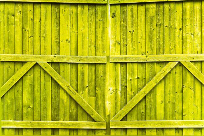 Double Gate Lemon Lime Photography Backdrop