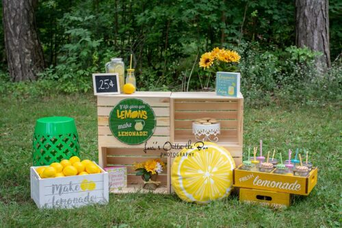 Outdoor Lemonade Stand Photography Backdrop