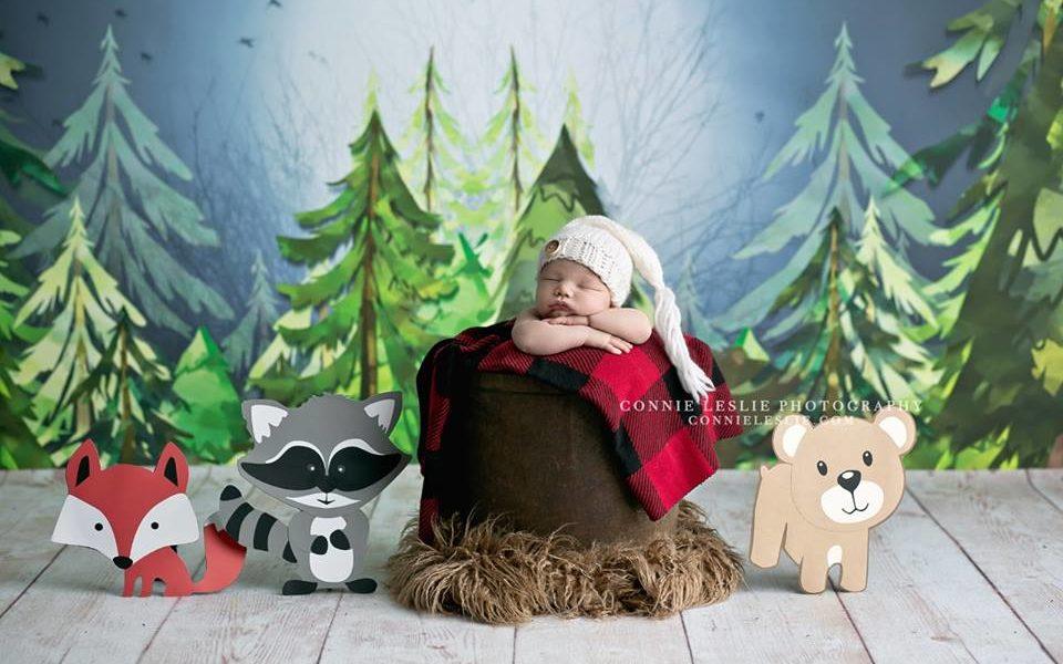 Newborn Forest Themed Photo Shoot