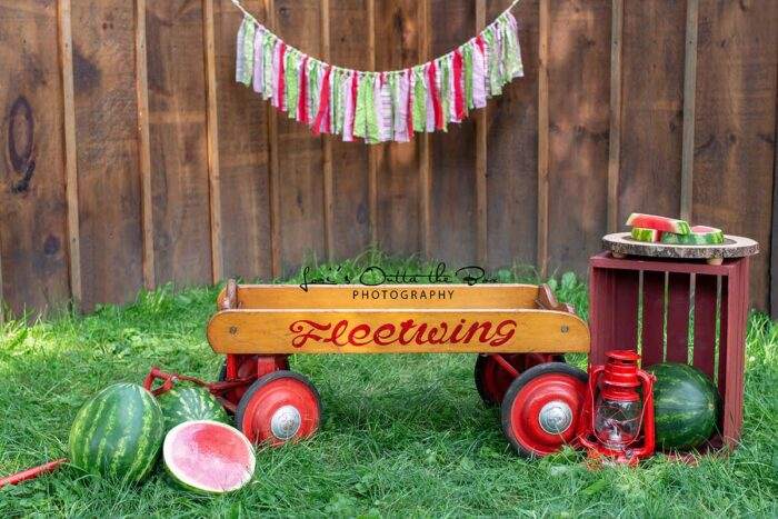 Wagon Watermelon themed photography backdrop