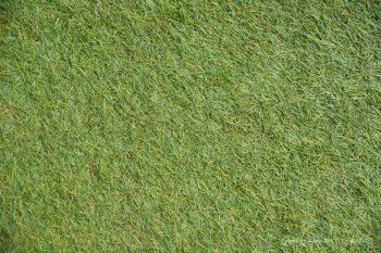Green Grass Floordrop
