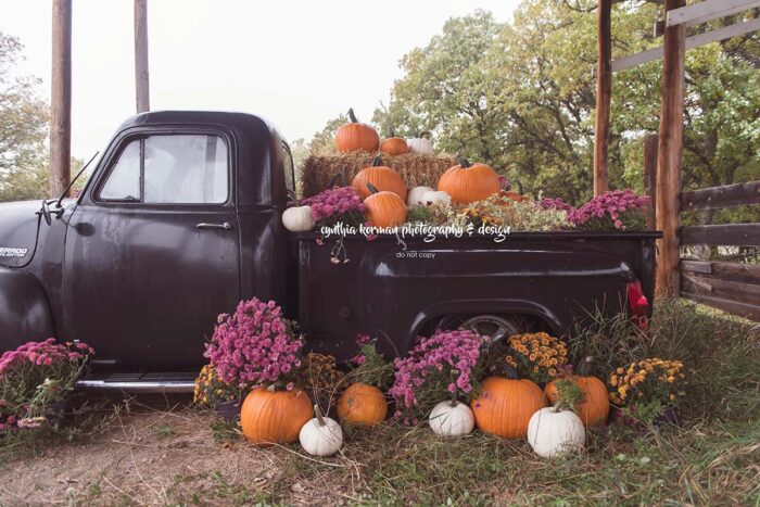 Backdrop of Black Pick Up Truck full of pumpkins