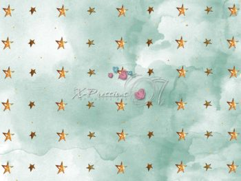 Golden Stars Photography Backdrop