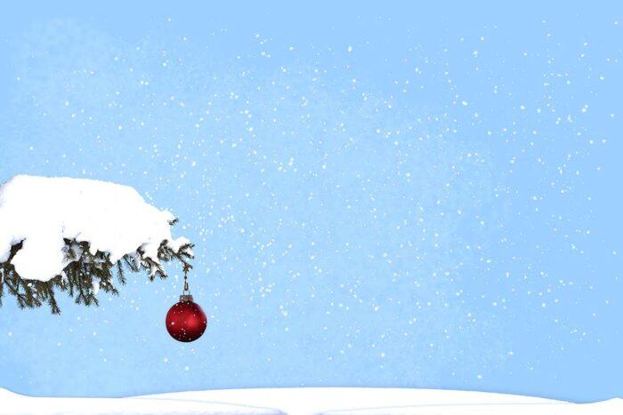 Single Red Bulb Christmas Backdrop