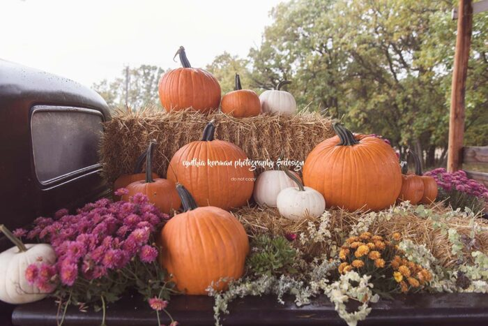 Backdrop with a pick up truck decorated with pumpkins