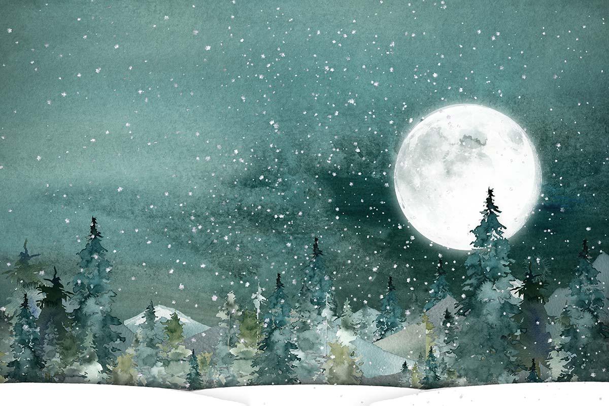 Bright Winter Moon Backdrops Canada