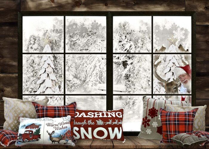 Santa Peeking through window Photography Backdrop