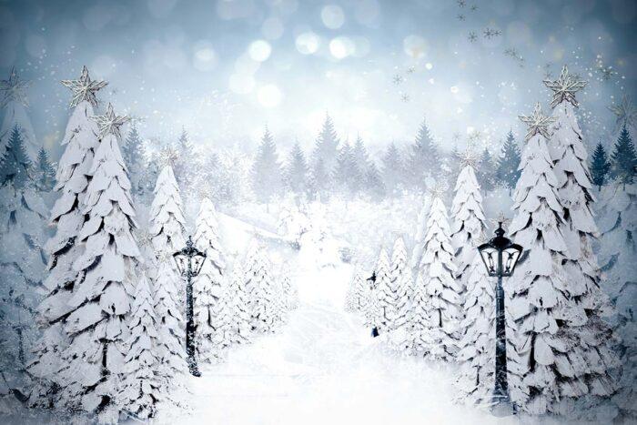 Snowflake Lane Winter Backdrop