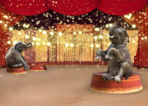 Circus Themed Backdrop with Elephants