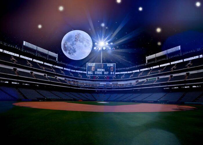Baseball Field Themed Backdrop