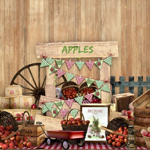 Apple Stand Photography Backdrop