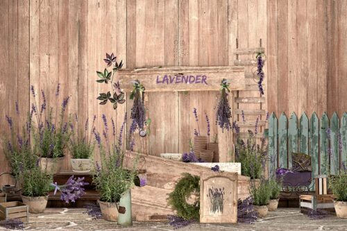 Lavender Stand Photography Backdrop