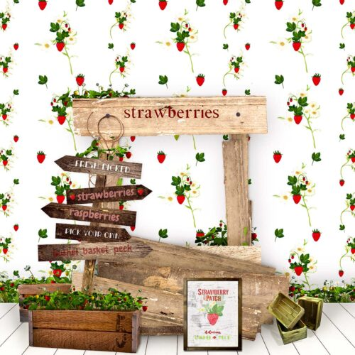 Strawberry Stand Photography Backdrop