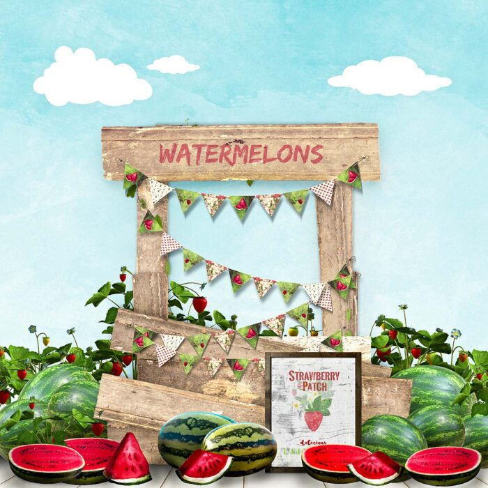 Watermelon Stand Photography Backdrop